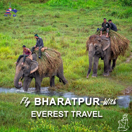 Fly to Bharatpur with Everest Travel